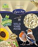 Lyra Pet® 20 kg Sonnenblumenkerne 20000 g geschält BRUCH Wildvogelfutter neue Ernte 2019