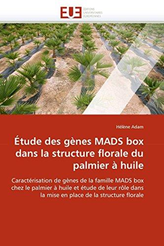 Étude des gènes MADS box dans la structure florale du palmier à huile: Caractérisation de gènes de la famille MADS box chez le palmier à huile et ... de la structure florale (Omn.Univ.Europ.)