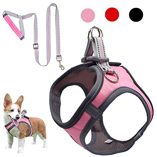 Dog Harness and Leash Set, Reflective Adjustable Dog Vest Harness for Small Dogs, Breathable Fit for Small Medium Pet Vest Harness Set, Cat Leash and Breathable Puppy Harness (1-Pink L)