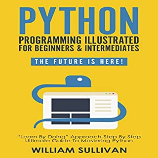 Python Programming Illustrated for Beginners & Intermediates: The Future Is Here! audiobook cover art
