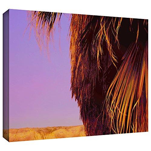 Price comparison product image ArtWall Dean Uhlinger 'Twilight Palm Borrego' Gallery-Wrapped Canvas Artwork
