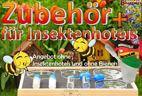 BTV Batovi Bienentränke+Futterset MIT Box für den Bienengarten, mit Bienenblumen-Samen für Insektenhotels + Tränken und Futterschalen, Futterkonzentrate, Menüplan + Anleitung + witzige Hotelzeitung