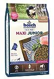 Bosch Maxi Croquette pour Chiot Junior Géante Race 3 kg
