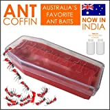 Ant Traps Review and Comparison