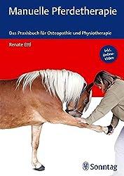 Faszien Pferd: Warum sie so wichtig für die Gesundheit deines Pferdes sind 2