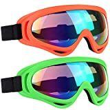 10 Best Snowboard Goggles for Kids