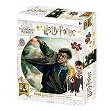 Prime 3D- Redstring - Puzzle lenticular Harry Potter Batalla 300 piezas (Efecto 3D) (1)