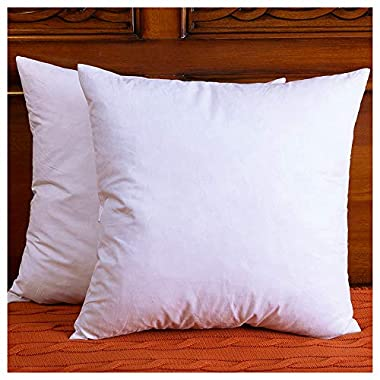 DOWNIGHT Set of 2, Down and Feather Throw Pillow Insert, The Fabric is Cotton, Decorative Throw Pillows Insert, 24 X 24 Inch