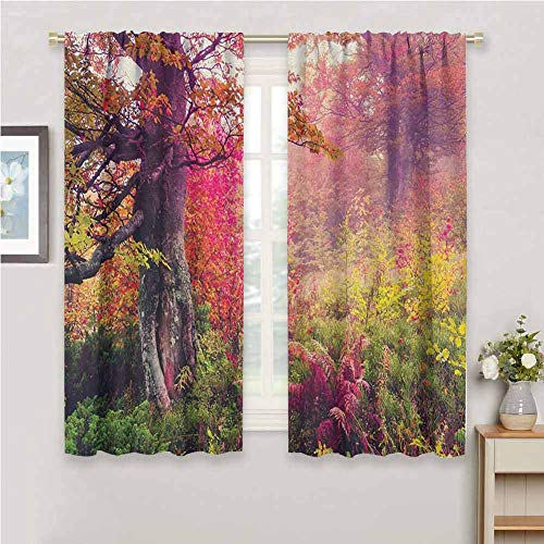 Price comparison product image Jinguizi Forest Wall Curtain Fairy Majestic Landscape with Autumn Trees in Forest Natural Garden in Ukraine Room Darkening Curtains for Bedroom Red Green Brown 72 x 72 inch