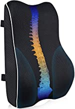 Lumbar Support Pillow for Office Chair,Memory Foam Back Cushion for Back Pain Relief,Ergonomic Back Support with 3D Mesh Breathable Cover for Car Seat Computer/Desk Chair,Double Adjustable Straps