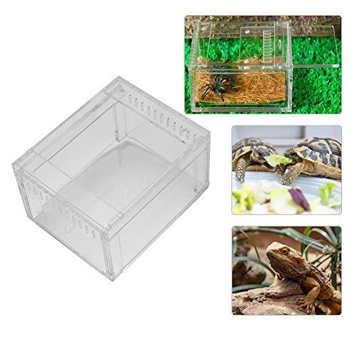 Pssopp Terrarium Insektenbox Acryl Transparent Reptilienzuchtbox Reptilien Reptilienbehälter Fütterungsbox Insektenboxen für Reptilien Amphibien Insekten