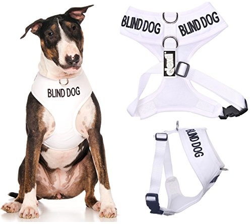Blind Dog (Dog Has Limited/No Sight) White Color Coded Non-Pull Front and Back D Ring Padded and Waterproof Vest Dog Harness Prevents Accidents by Warning Others of Your Dog in Advance (L)