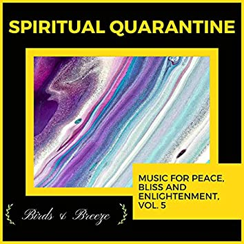 Spiritual Quarantine - Music For Peace, Bliss And Enlightenment, Vol. 5