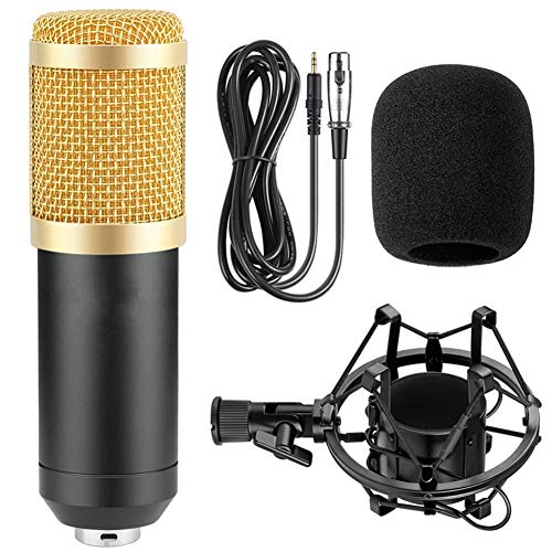 LYA USB-microfoon computermicrofoon, plug-and-play home opnamemicrofoon, set metalen demper houder + audiokabel + winddichte spons radiosverzending zangopname
