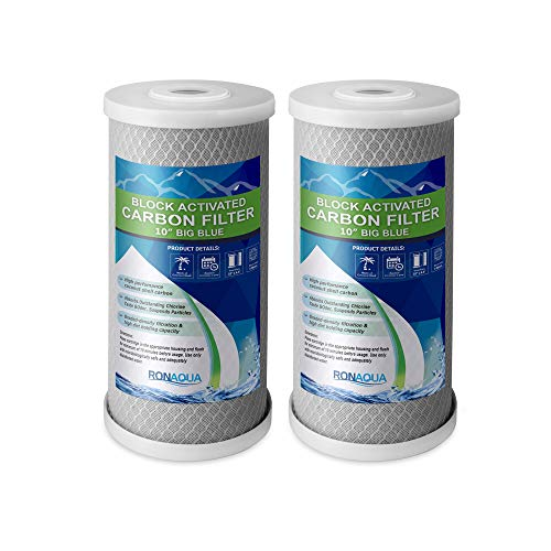 Big Blue CTO Carbon Block Water Filters 4.5' x 10' Whole House Cartridges WELL-MATCHED with CBC Series, WFHDC8001, EP and EPM Series (2 Pack)