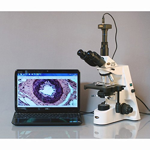 AmScope T690C Trinocular Compound Microscope, 40X-2500X Magnification, WH10x and WH25x Super-Widefield Eyepieces, Infinity Objectives, Brightfield, Kohler Condenser, Double-Layer Mechanical Stage