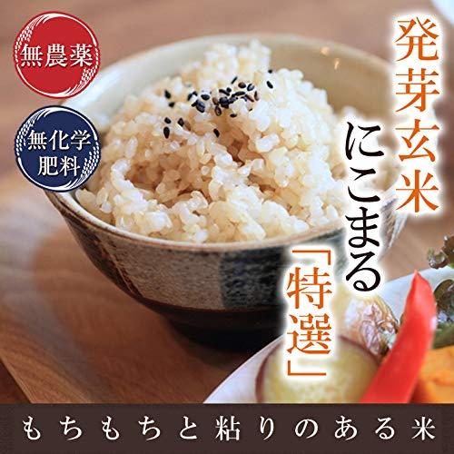 発芽玄米 無農薬・無化学肥料栽培 無農薬にこまる「特選」限定米 3kg 真空パック 米・食味鑑定士認定米