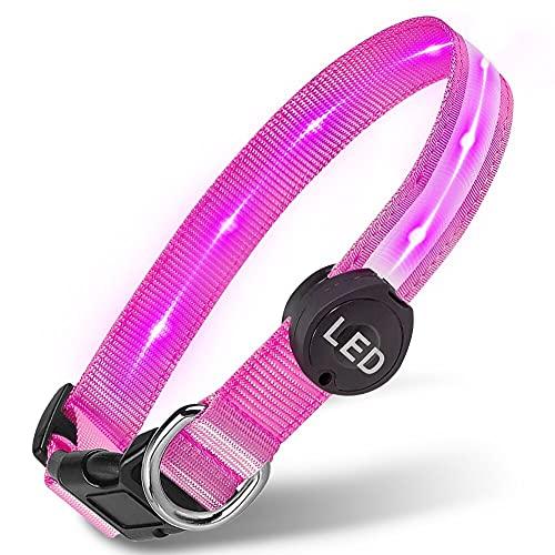 Plartree Collar de Perro, LED Recargable USB Collar para Perro Luminoso con Luz Intermitente Impermeable Collares de Perro Ajustables, 8 Colores Collar Luminoso Perro para Perros Medianos/Grandes
