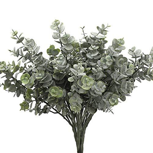 Planta De Eucalipto  marca Unknown