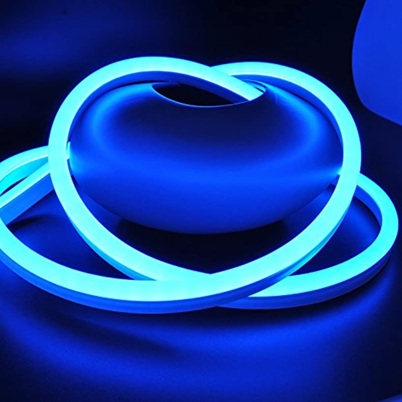 CBConcept ETL Listed 120 Volt LED NEON Flexible Lighting Strip, 40 Feet, BLUE, Waterproof Resistant, Accessories Included - [Ideal For Indoor/Outdoor Lighting] [Ready to plug to shine]