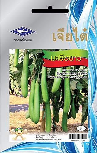 Portal Cool 1 paquet: 200 Graines Aubergine Long Green Thai jardin potager santé des plantes Chia Tai