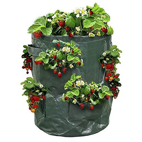 OSE Sac à fraisiers - Sac de Plantation pour Fraises - X2