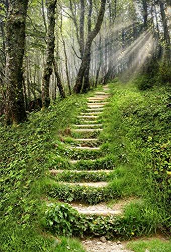 YongFoto 1x1,5m Vinilo Fondo de Fotografia Camino de montaña Escalera Paisaje...