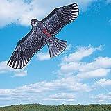 AUBERSIT 1 PCS 1.1m Enorme Eagle Kite, Eagle Kite Flying Fácil Control Salidas Familiares Diversión al Aire Libre Deportes para niños con línea de Cometas, 1 PC Color Aleatorio