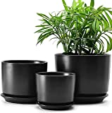 PnaXTong Potes de Planta de cerámica Interior con Orificio de...