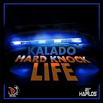 Hard Knock Life