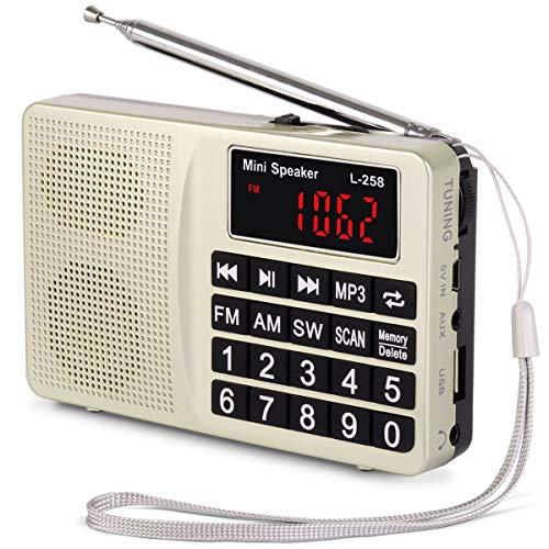 Radio Portable PRUNUS L-258 SW/FM/AM(MW)/TF/USB(0-64 GB) MP3, Large Bouton et Affichage, Enregistre Les Stations manuellement ou en Automatique.