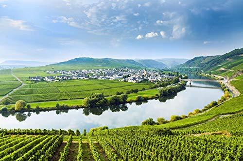 Jochen Schweizer Geschenkgutschein: Weinausflug mit Planwagenfahrt und Verkostung in Rheinhessen