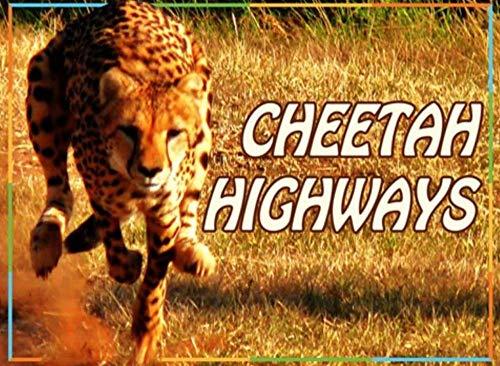 cheetah highways: Children's Picture Book (English Edition)