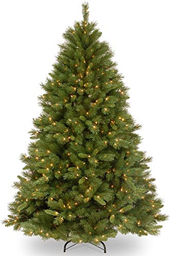 National Tree Company Pre-lit Artificial Christmas Tree | Includes Pre-strung White Lights and Stand | Winchester Pine - 7.5 ft