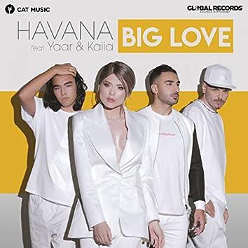 Big Love (feat. Yaar, Kaiia)