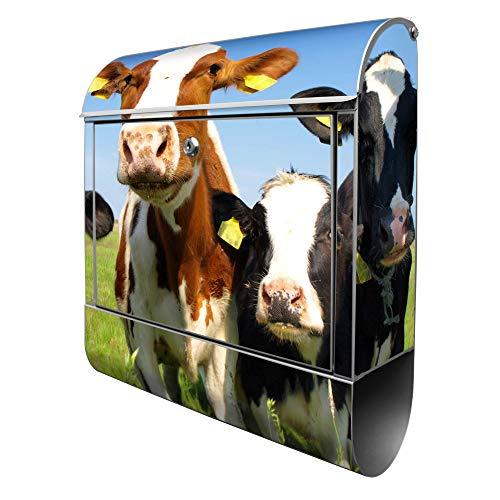 Banjado Design Briefkasten mit Motiv Kühe | Stahl pulverbeschichtet mit Zeitungsrolle | Größe 39x47x14cm, 2 Schlüssel, A4 Einwurf, inkl. Montagematerial