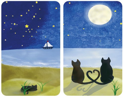 WENKO 2521140500 Herdabdeckplatte Universal Katze - 2er Set, für alle Herdarten, je 30 x 4,5 x 52 cm