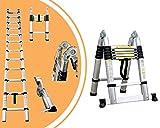 Leogreen - chelle Multifonction, chelle Telescopique, 3,8 mtre(s), Barre stabilisatrice, EN 131, Standards/Certifications: EN131, Nombre de barreaux: 12