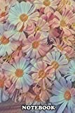 Notebook: Pink Daisy In Bloom In Spring , Journal for Writing, College Ruled Size 6' x 9', 110 Pages
