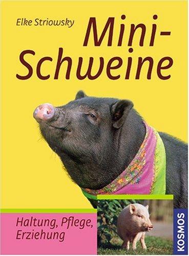 Minischweine: Haltung, Pflege, Erziehung