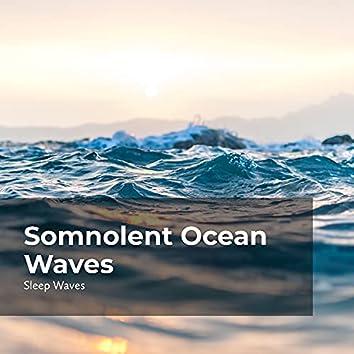 Somnolent Ocean Waves