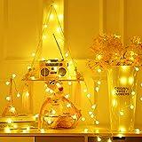 Briignite Catena Luminosa Interno, Lucine LED Decorative, 5M 40 LED con USB, Bianco Caldo ...