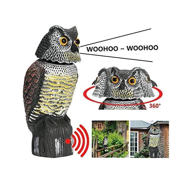 Wing Ahuyentador de pajaros, Buho espanta Palomas, Buho espantapajaros con Sonido y Cabeza Giratoria, Control de Aves para jardín, Patio, Granja etc,1pcs
