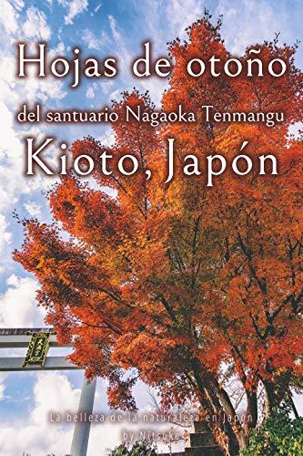 Hojas de otoño del santuario Nagaoka Tenmangu Kioto, Japón