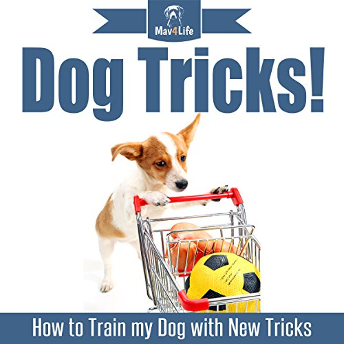 Dog Tricks!: How to Train My Dog with New Tricks audiobook cover art