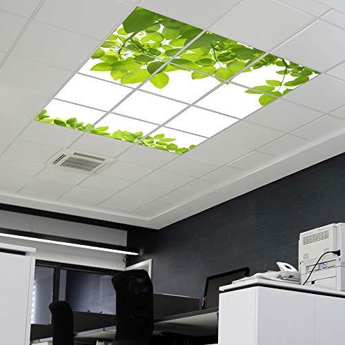 banjado LED Lichtdecke mit Acryl-Bild | Lichtdeckenplatte aus Acryl 60x60cm | Deckenpaneel mit Motiv Rahmen Blätter | Panel für Deckenleuchte Rasterdecke