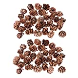 60 Pezzi Mini Naturali Rustic Secchi Coni di Pino in Massa Forniture per Bricolage
