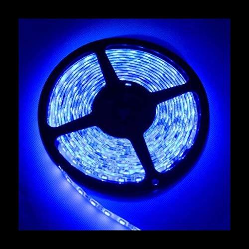 300 LED 3528 STRIP STRISCIA 5m 12V blu IP65 5 metri IMPERMEABILE barca