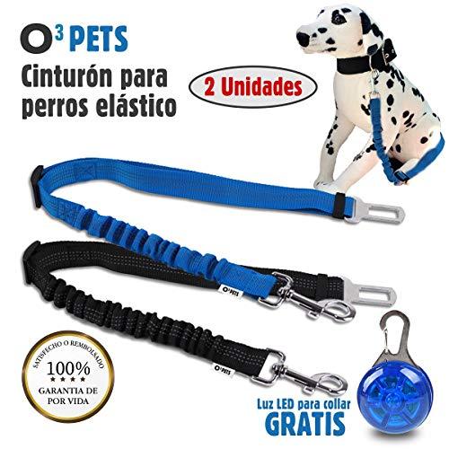 O³ PETS Cinturon Perro Coche Homologado 2 Unidades Elásticos con Luz LED para Collar | Cinturón De Seguridad De Coche para Perro - Correa Antitirones Perro Ajustable – Más Comodidad para Tu Perro