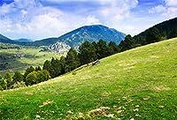 Qinunipoto 背景布 撮影 スタジオ撮影用背景布 专业级摄影 背景ボード 自然の風景 ハイランド草原 松の森の夏景色 なだらかな山 屋外の風景 緑の風景 レジャー写真 ポリエステル 洗濯可 撮影布 2.1m x 1.5m